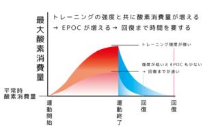 EPOC 300x195 - ガーミンのトレーニングステータスを見直す~肉離れを予見できたか?~